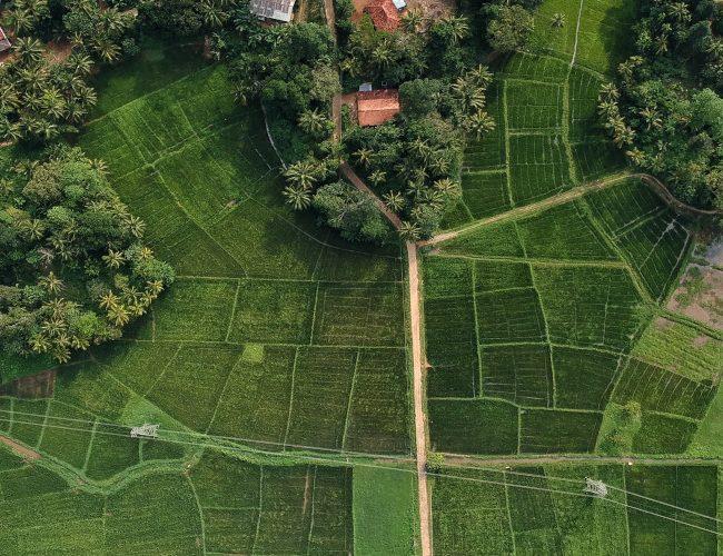 Le triangle culturel du Sri Lanka vu depuis une montgolfière