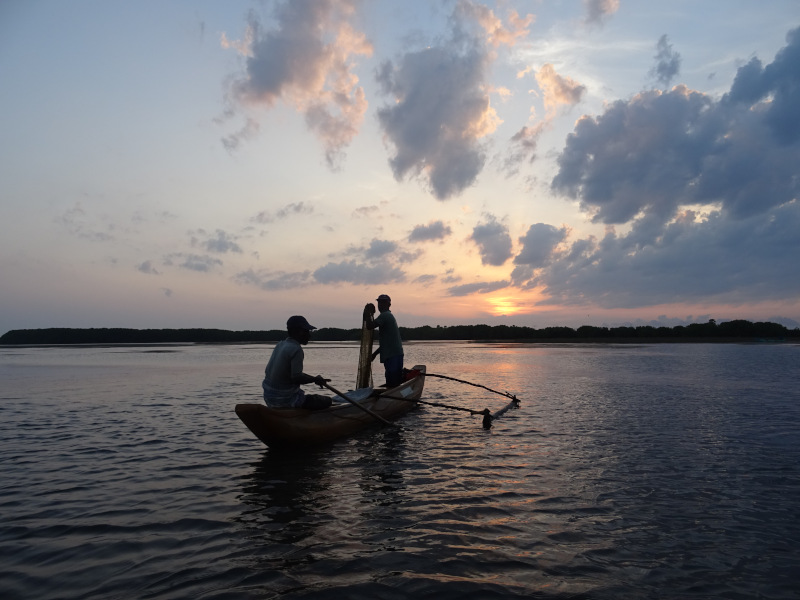 Balade en bateau dans la région d'Arugam Bay au Sri Lanka