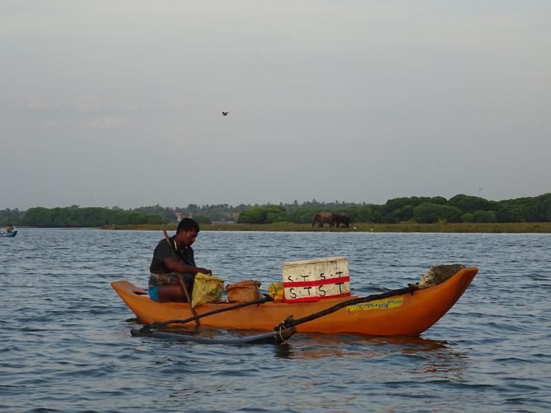 Pêcheur sur le lagon de Pottuvil au Sri Lanka