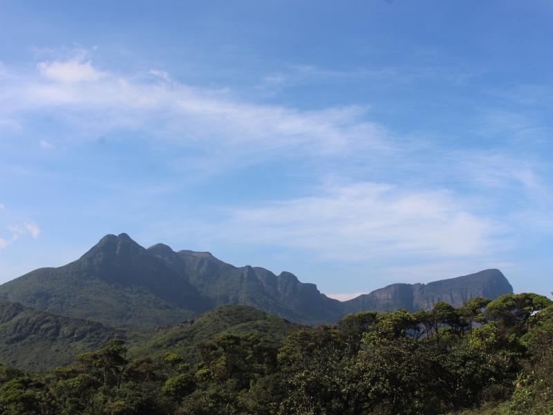 Massif des Knuckles au Sri Lanka, classé au patrimoine mondial de l'UNESCO