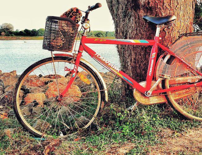 Découverte à vélo des ruines du site d'anuradhapura au Sri Lanka