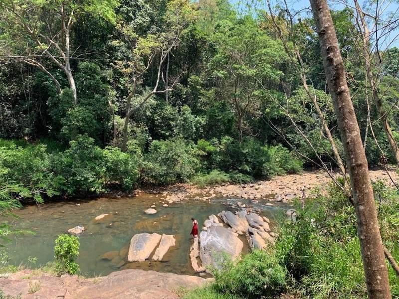 Rivière longeant un centre ayurvédique au Sri Lanka